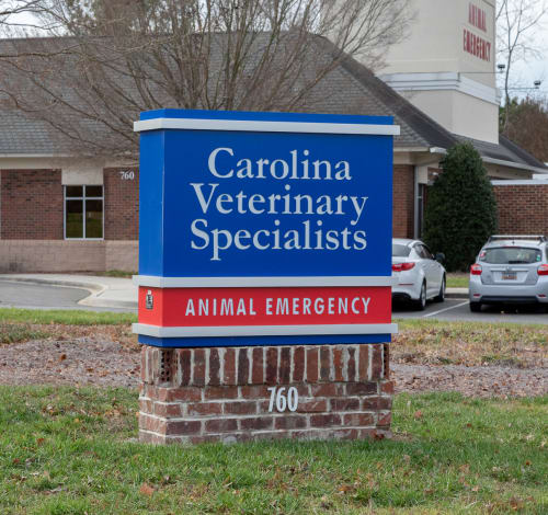 About Us, Carolina Veterinary Specialists in Rock Hill